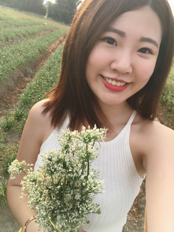 大溪韭菜花田