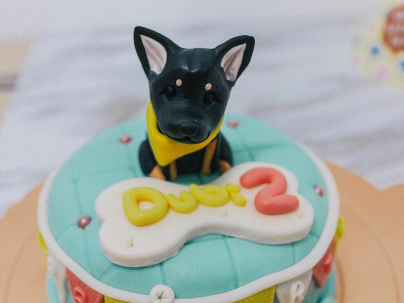 寵物生日蛋糕