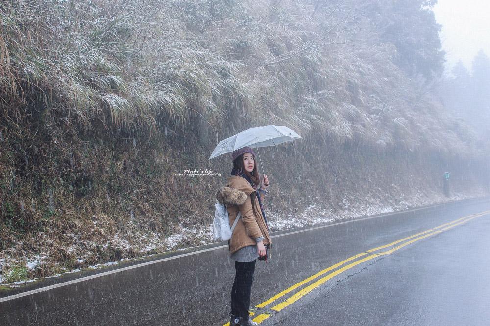 太平山下雪