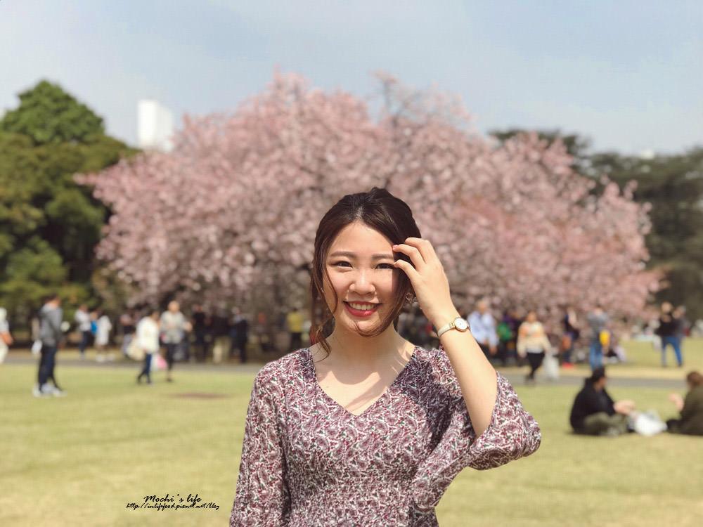 東京賞櫻自由行2019