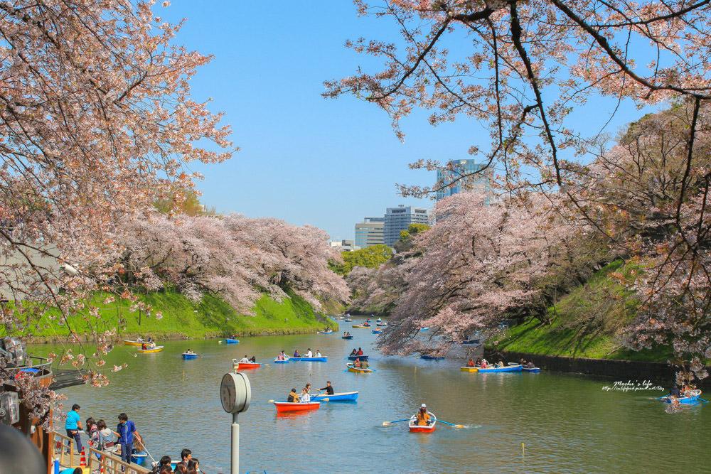 東京櫻花景點