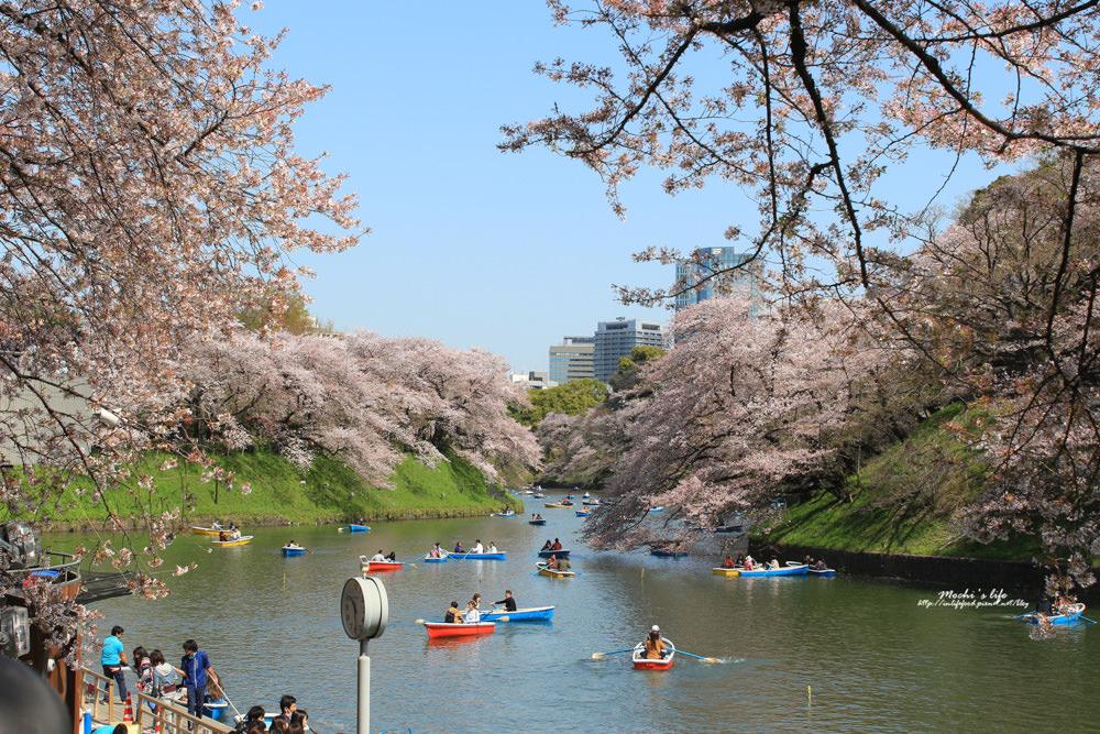 東京賞櫻景點
