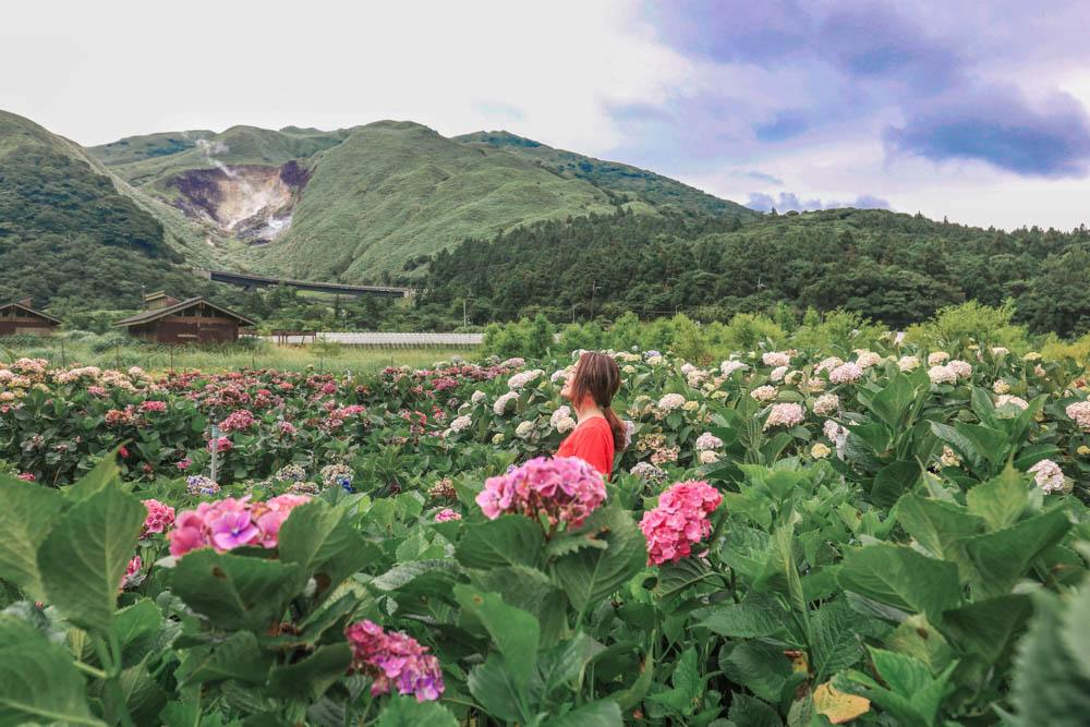財福繡球花園