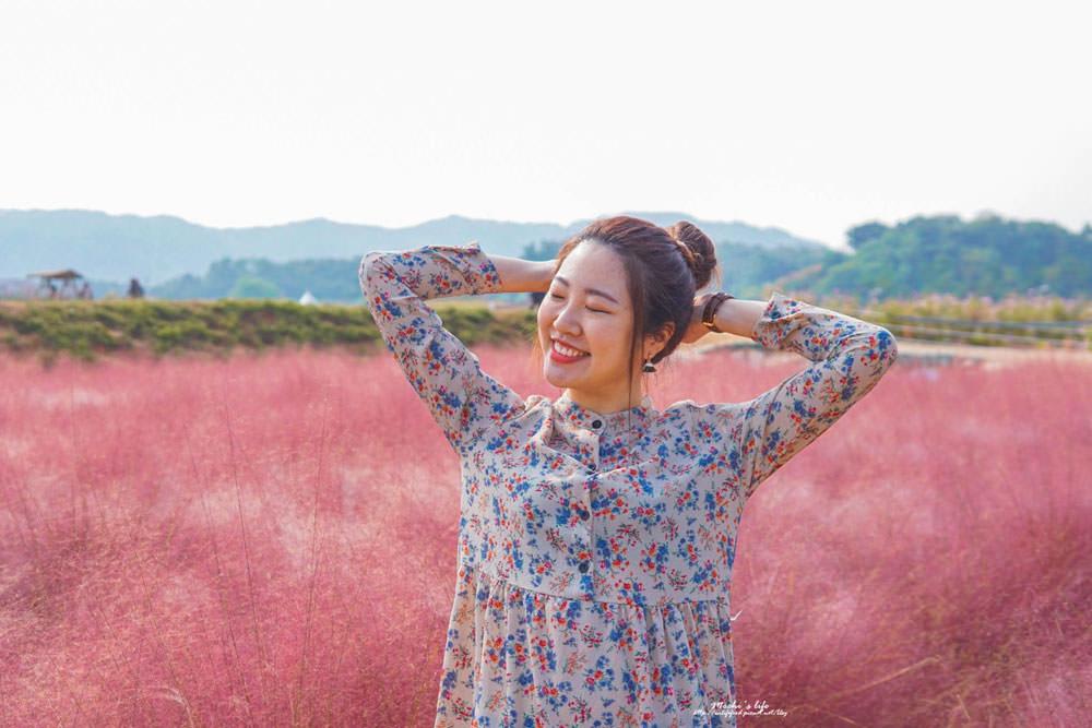 粉紅亂子草