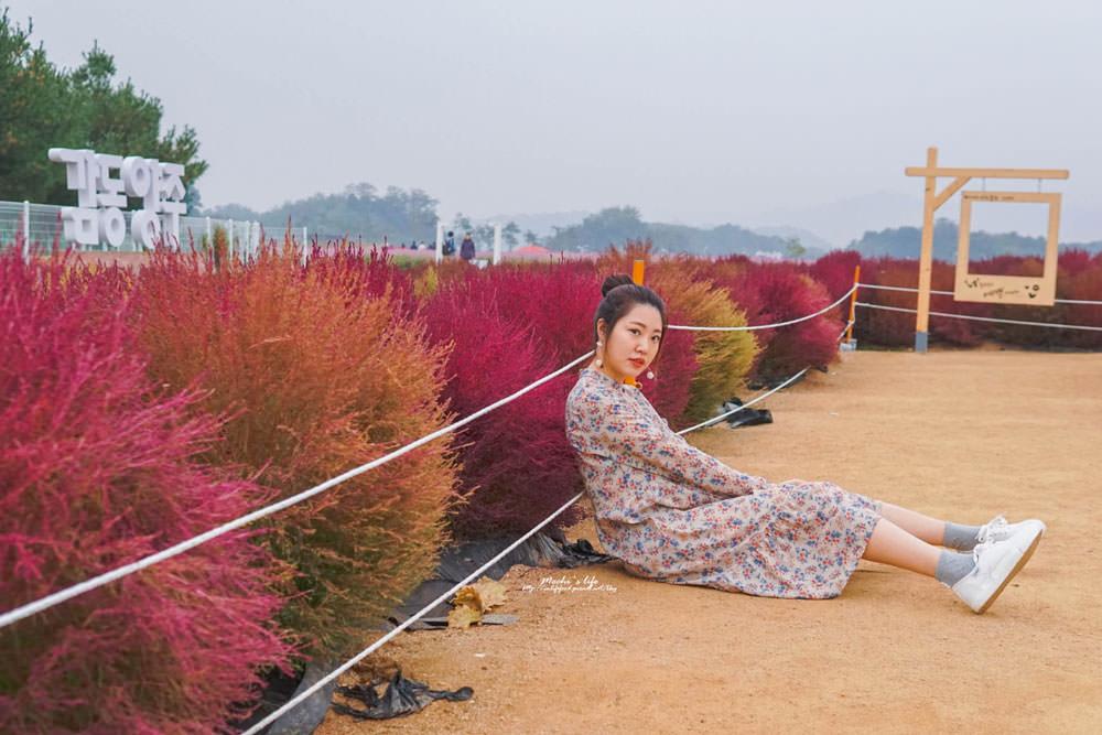 韓國nari公園