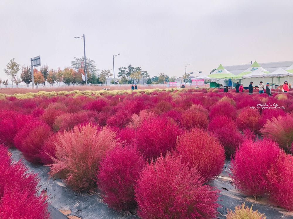 楊州nari公園交通