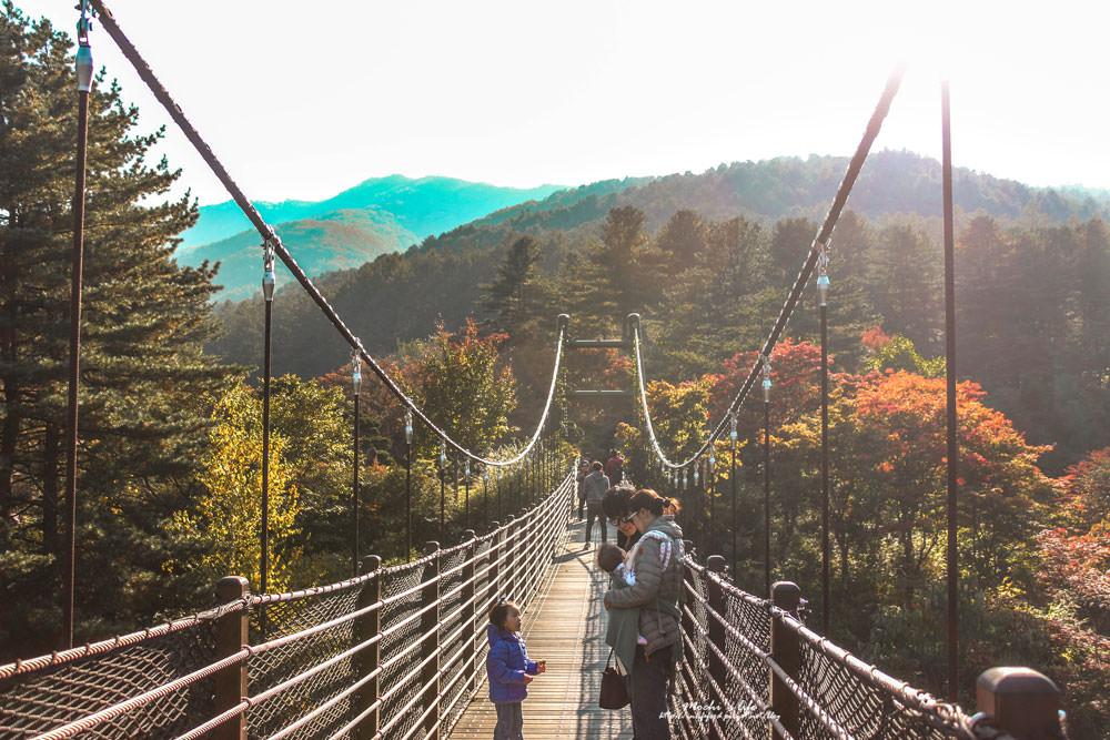 江村鐵道自行車怎麼去