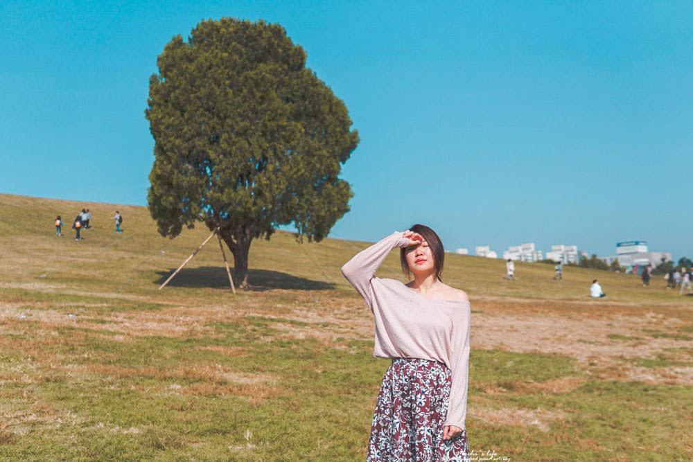 韓國楓葉景點|奧林匹克公園孤獨的樹:秋天限定楓葉銀杏,雖然有點遠但真的很美~올림픽공원@夢村土城站
