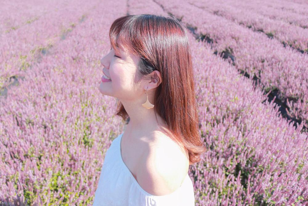 桃園紫色花海