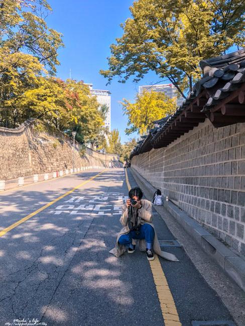 首爾銀杏2019