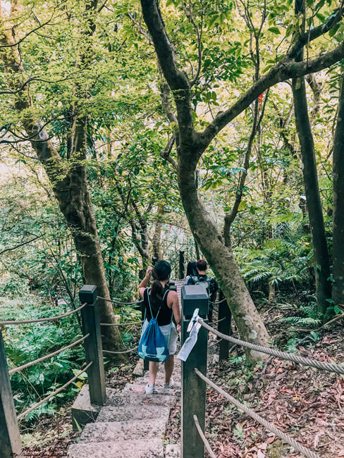 台北瀑布秘境