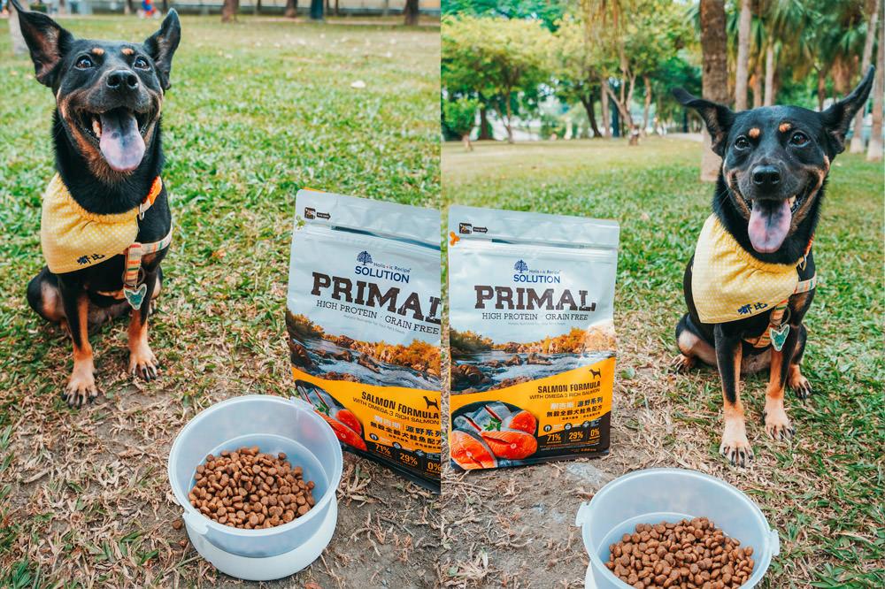 狗飼料推薦|耐吉斯飼料源野系列,優質動物性蛋白質,嘟比毛髮亮麗推薦
