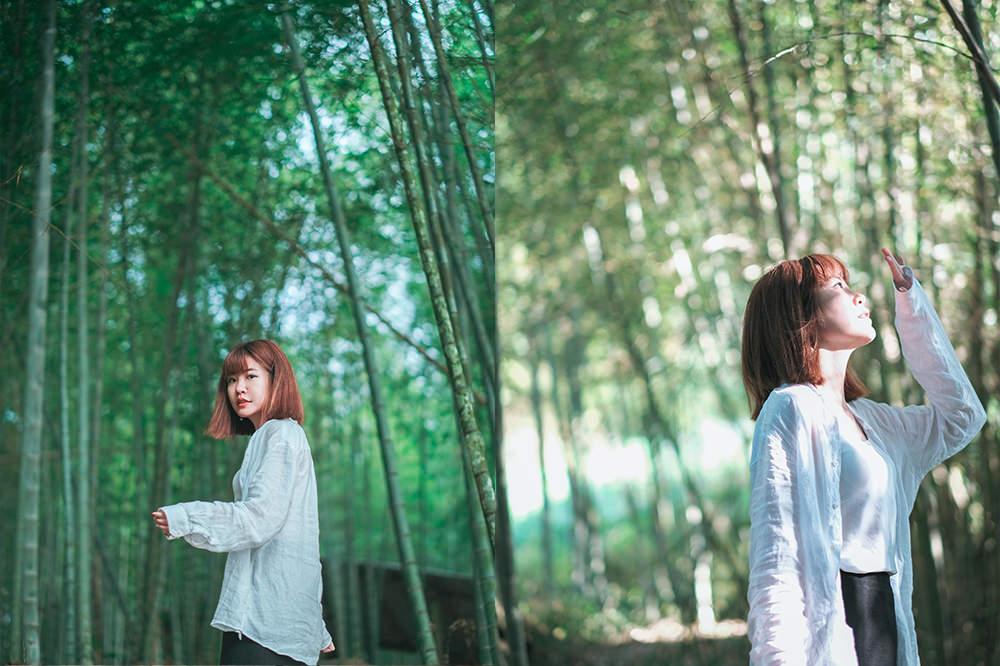 嘉義私房景點推薦|瑞太古道:IG尚未爆紅小秘境,茶園+竹林一次拍齊!