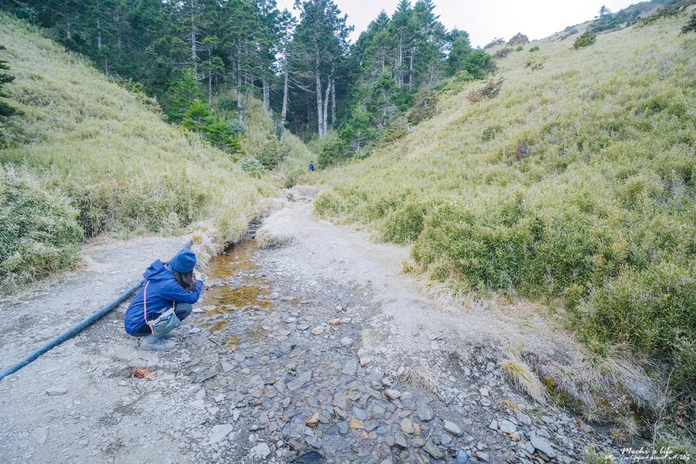 小溪營地水源