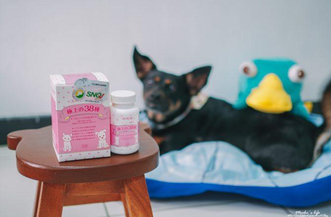 寵物保健品推薦 PS BUBU超級黑酵母:SNQ國家認證!由內而外保養,幫助狗狗貓咪改善體質