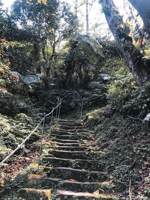 土城爬山步道