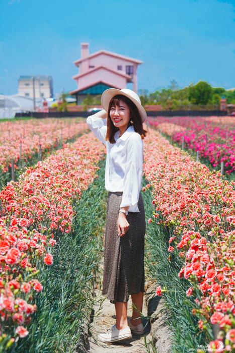 田尾康乃馨