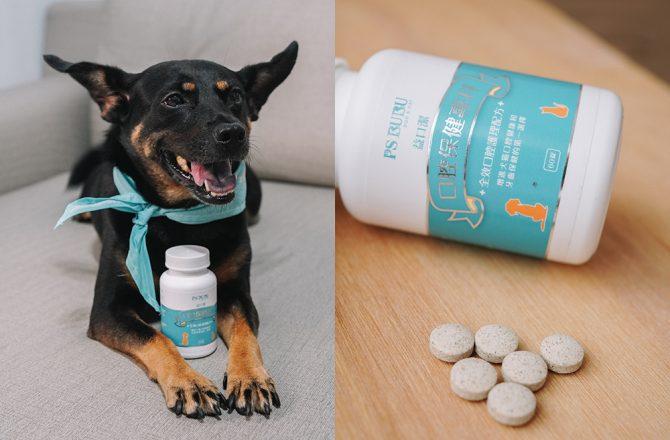 寵物口腔保健 狗狗不愛刷牙怎麼辦?PS BUBU益口潔讓寵物嘴巴不臭,維護牙齒健康
