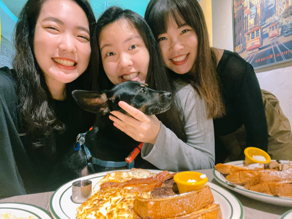 科技大樓站餐廳,科技大樓站早午餐,樂子瑞安店,台北早午餐推薦,台北寵物友善餐廳推薦