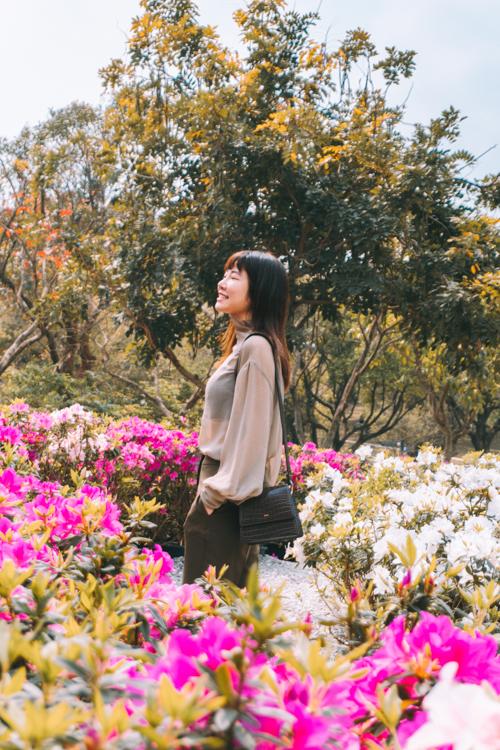 台北捷運一日遊,大安森林公園繡球花,大安森林公園杜鵑花,大安森林公園繡球花幾號出口,台北市區賞花