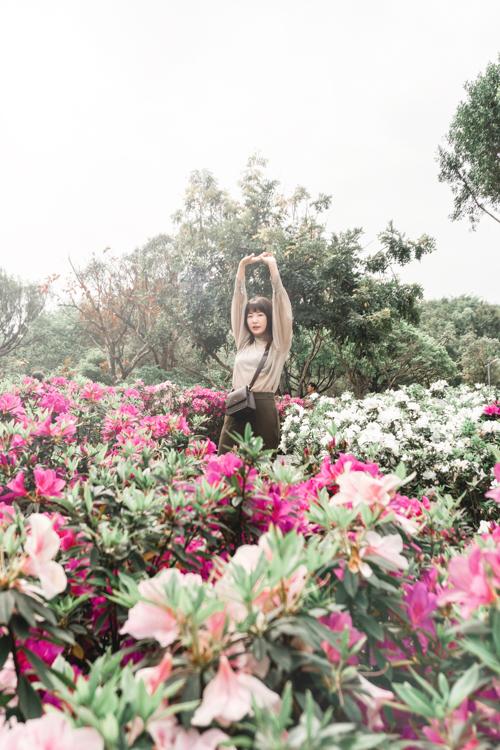 大安森林公園花季,大安森林公園繡球花,大安森林公園野餐,大安森林公園繡球花幾號出口,台北捷運景點