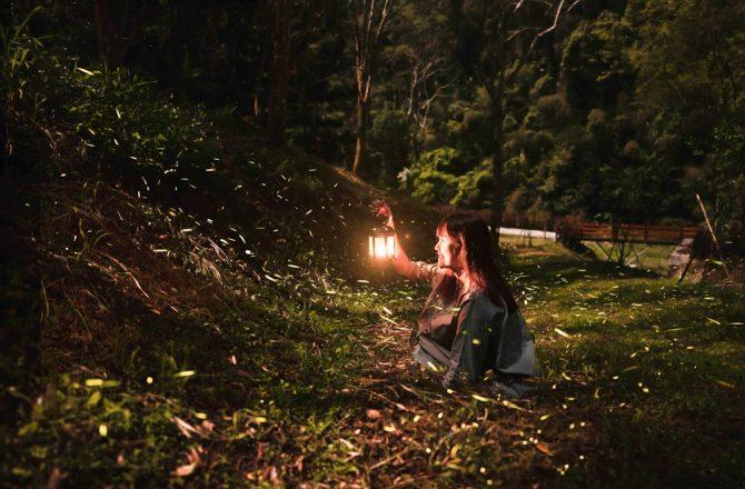 螢火蟲人像怎麼拍?只要三步驟,第一次拍螢火蟲就成功!中部賞螢秘境東勢林場,露營烤肉台中景點