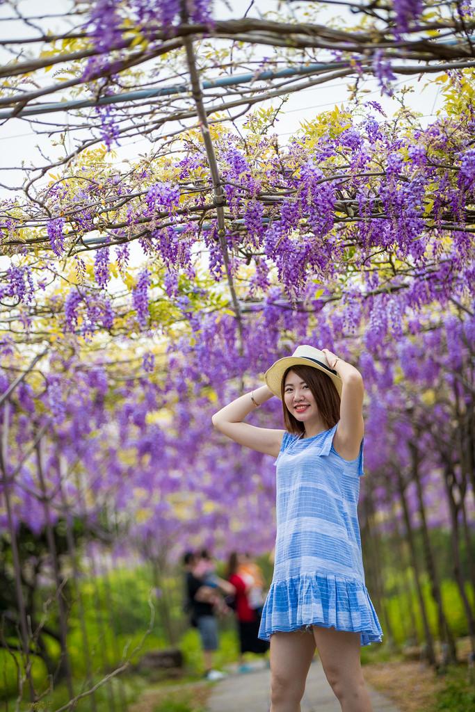 紫藤咖啡園二店